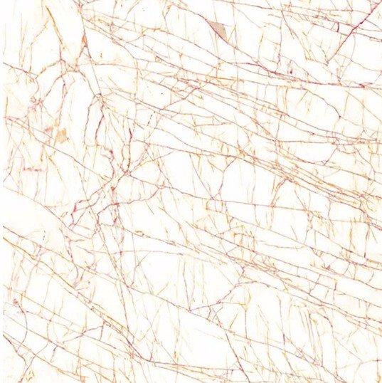 金蜘蛛 -L2G8830